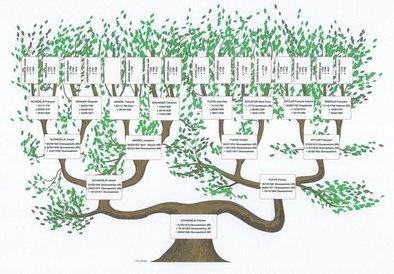 Genealogie Alsace Lorraine Vosges Crhf Centre De Recherches