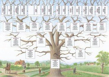 Genealogie Alsace Lorraine Vosges Crhf Centre De Recherches Sur L Histoire Des Familles Haut Rhin Guebwiller Le Crhf Arbres Genealogiques Grand Format